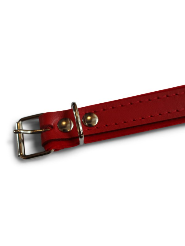 Red accordion straps