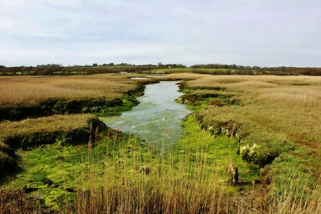 River Yar Isle of Wight seasonal hikes