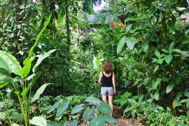 Exploring La Kukula eco-lodge in Puerto Viejo, Costa Rica