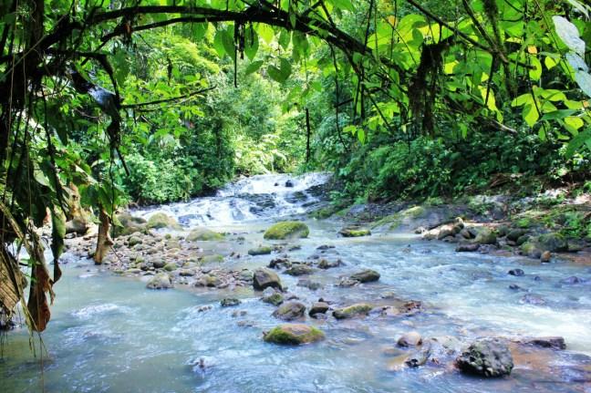 River walking tour rum smuggling - Charlie on Travel