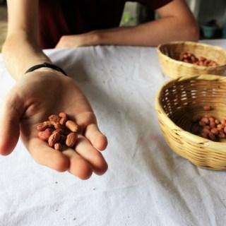 Make your own peanut butter with De La Gente in Antigua, Guatemala