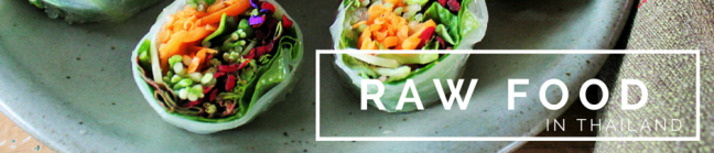 Raw food thailand charlie on travel header 2 (2)