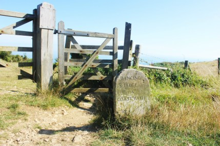 Charlie birthday - Dancing Ledge Dorset