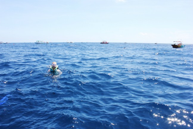 Luke snorkelling - whale sharks in Isla Holbox Mexico - Charlie on Travel