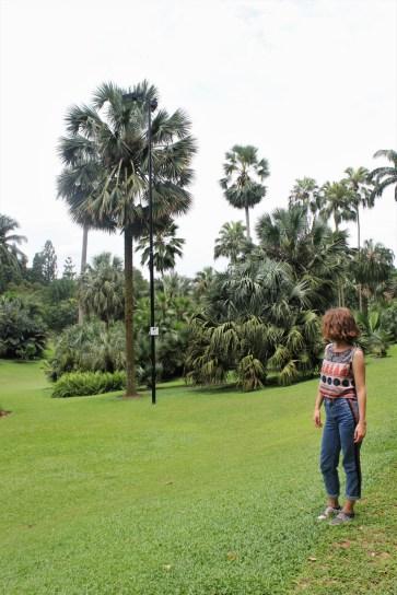 Charlie in Singapore botanical gardens