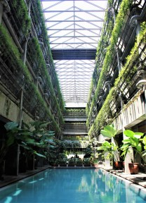 Greenhost Boutique Hotel swimming pool - green hotel Yogyakarta Travel Guide
