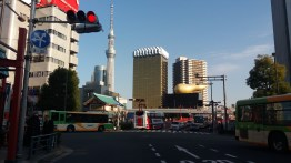 "Tokyo SkyTree and the ""parsnip"""