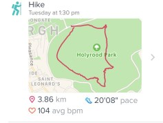 Fitbit mapping of our hike