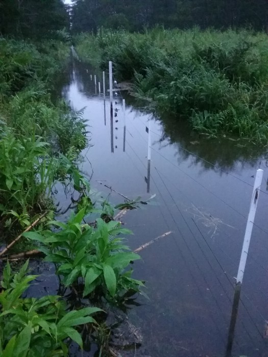flooded electric fence