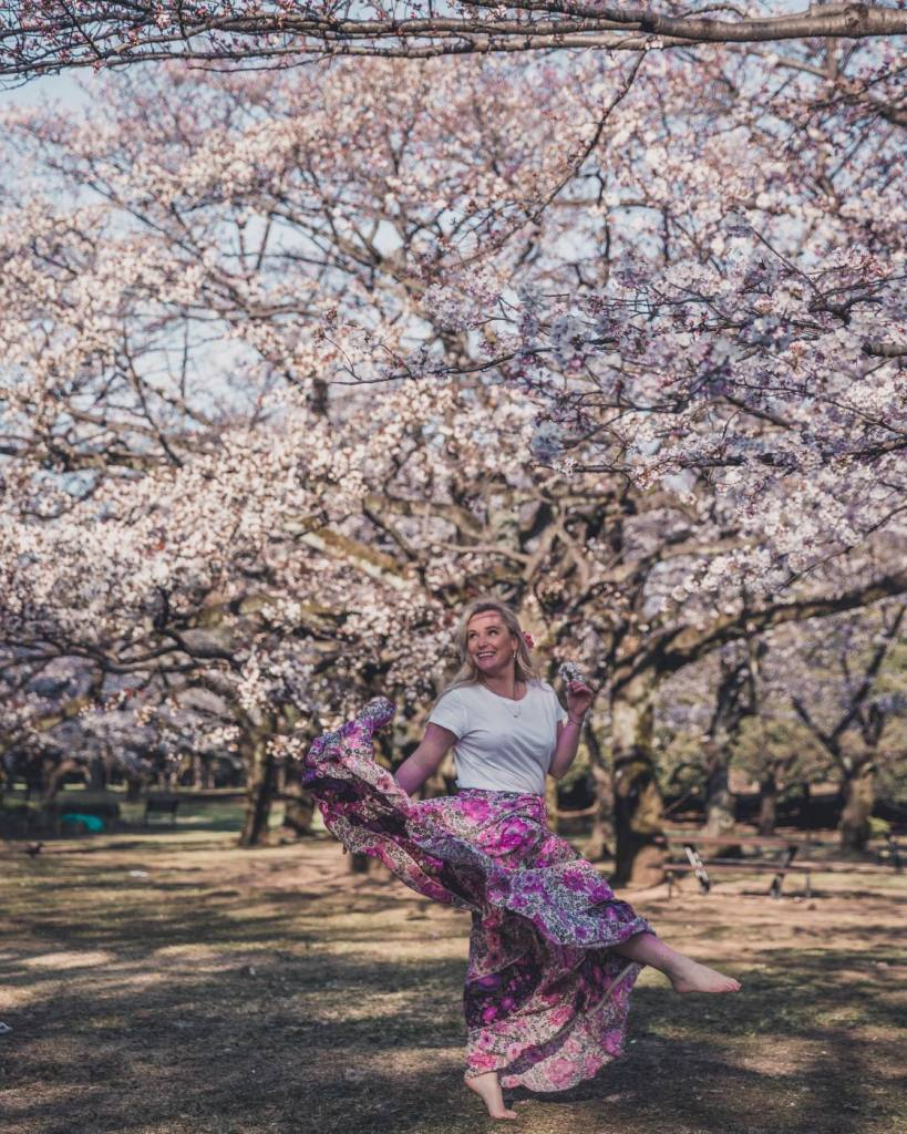 Where to see cherry blossoms in Tokyo in 2020