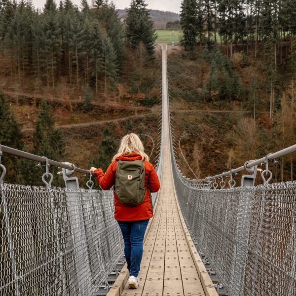 Geierlay Suspension Bridge in Mörsdorf, Germany - Travel Guide