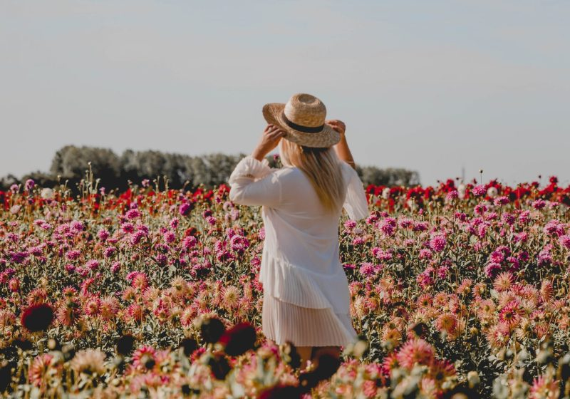 Fam Flower Farm – A Day Trip To This Amazing Dahlia Farm in The Netherlands