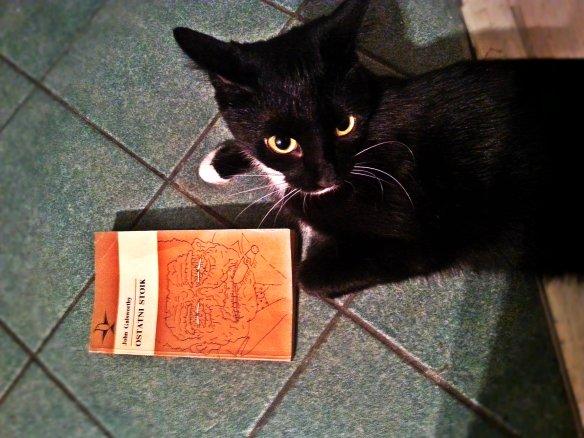 Zdjęcie Kiki z książką. Niestety było pozowane, na plus kotce trzeba dodać to, że nie uciekała przed książką:)