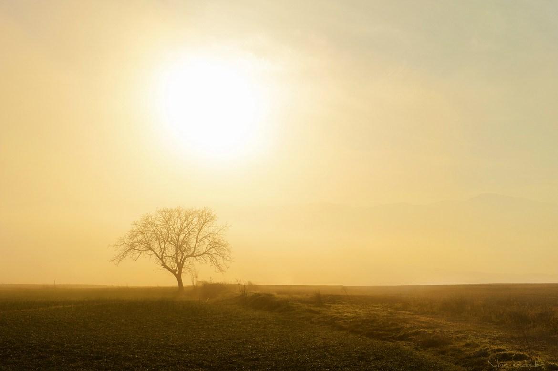 A tu pole i trochę mgieły. Źródło: https://flic.kr/p/iSYBym