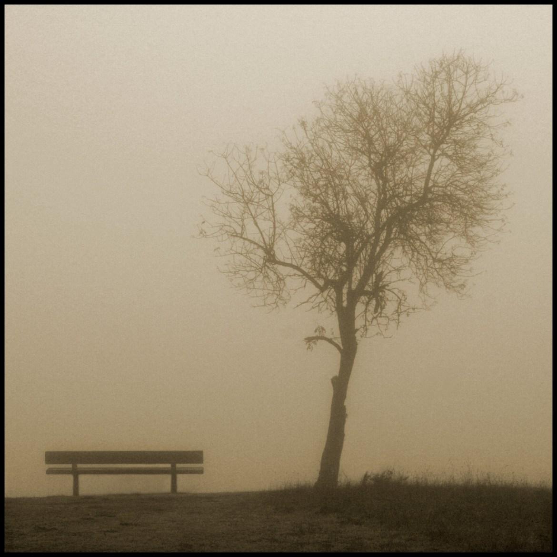 W dzisiejszym wpisie będą dominować fotografie z mgiełą w tle. Źródło: https://flic.kr/p/4asyMY