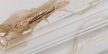 Roof-Leak-Repairs