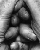 john-coplans-interlocking-fingers-no-18