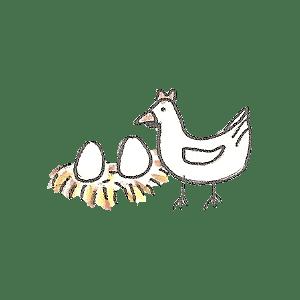 Poule et ses oeufs bio