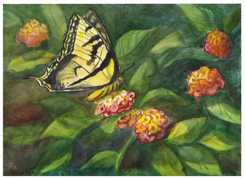 Tiger-Swallowtail Lantana