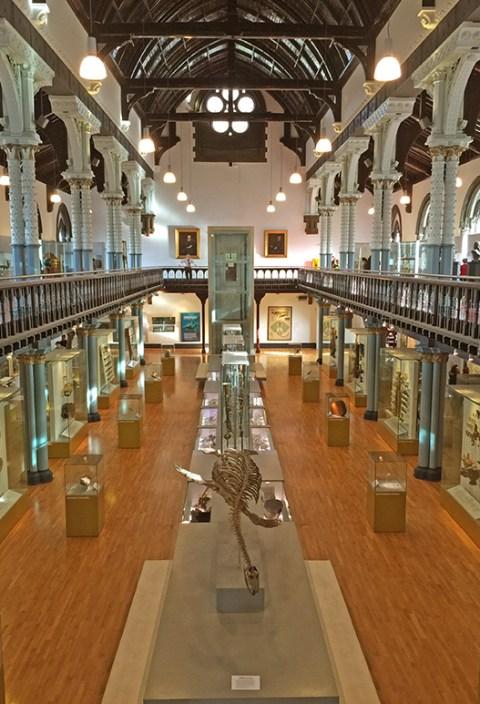 Huntarian-Museum-
