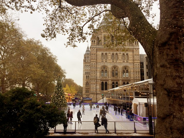 ice-rink-natural-history-museum