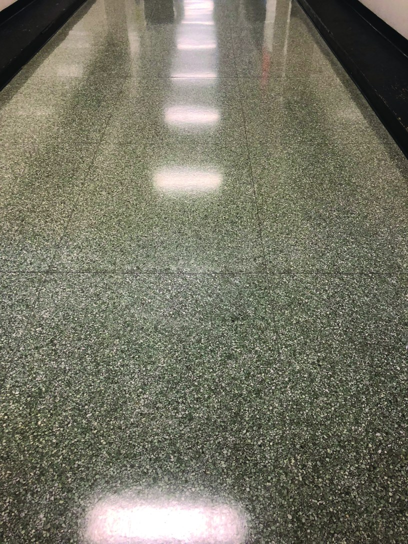 When we designed our award-winning Enviro-Solutions Terrazzo/Concrete Floor Care Program, we set out to create a program so that end users never need to deep strip, scrub, seal, or apply floor finish or diamond grind floors ever again.