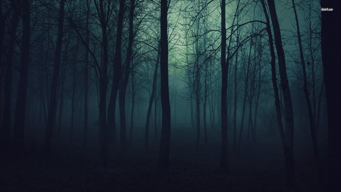 dark-forest-7