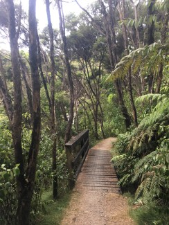Hike to Flagstaff Hill, Russell