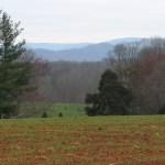 Virginia Gardner, Realtor Earlysville
