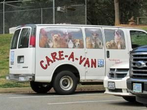 "SPCA ""Care-A-Van"""