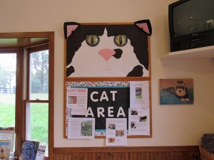 The cat area wall board at Earlysville Animal Hospital