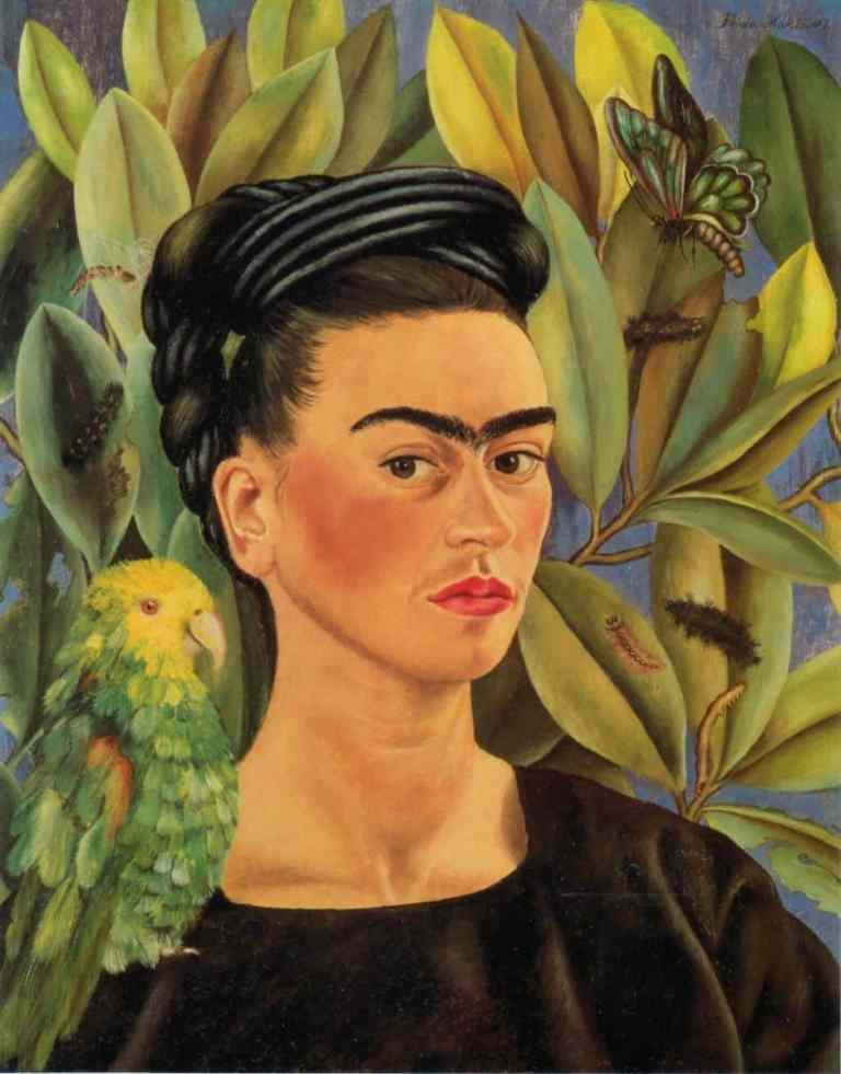 frida kahlo parrot bonito and butterfly