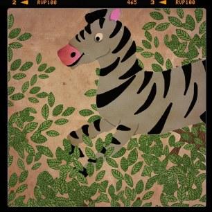 Zebra Picture By Martin Le Lapin
