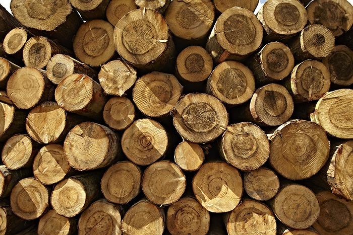 Charltons logs