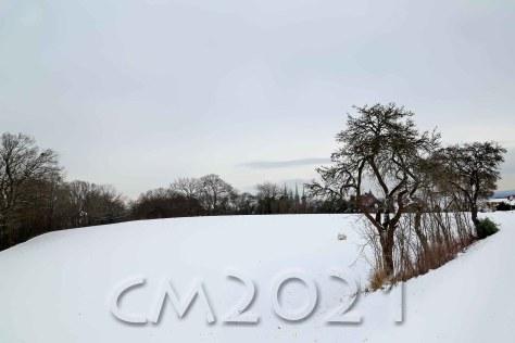Bamberg Januar 2021, Autor: Charlotte Moser