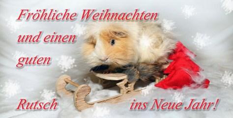 Froehliche Weihnachten, Autor: Charlotte Moser