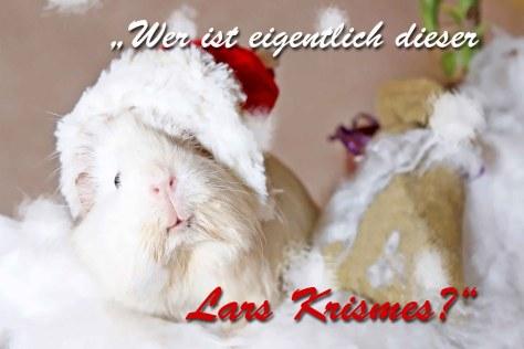 Weihnachtsklapp-Postkarte Vorderseite, Autor: Charlotte Moser