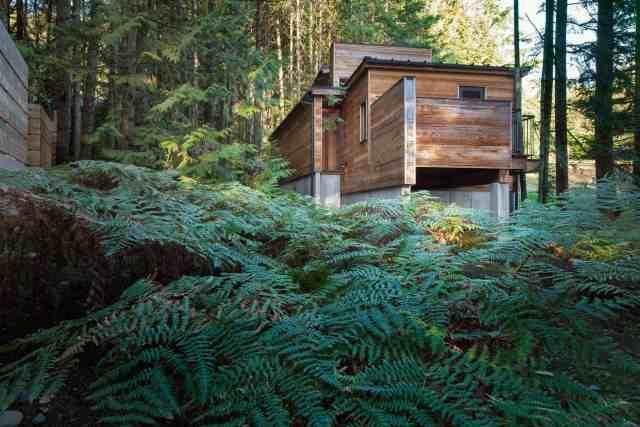 密集したブリティッシュコロンビアの森の巣の芸術家の家by Agathom(2)