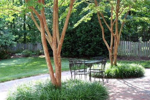パティオはパティオから突き出ている複数の木のために設計されています