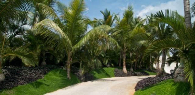 ドミニカ共和国のA-Ceroによる大規模なコンクリートの家(32)