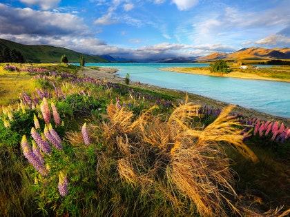 画像に含まれている可能性があるもの:植物、草、自然、屋外、土地、風景、風景、水、植生