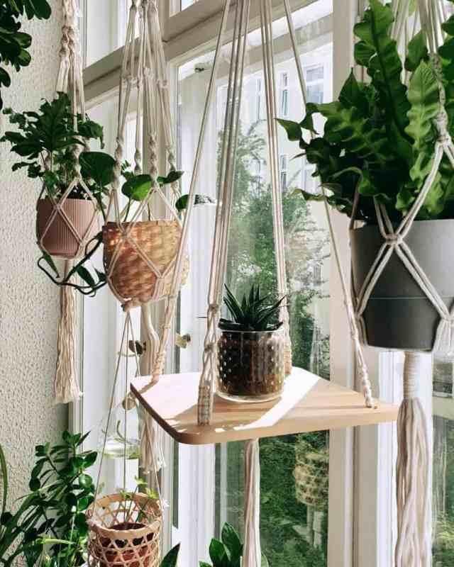 ハンギングプランター屋内ガーデンのアイデアj9s_jungle