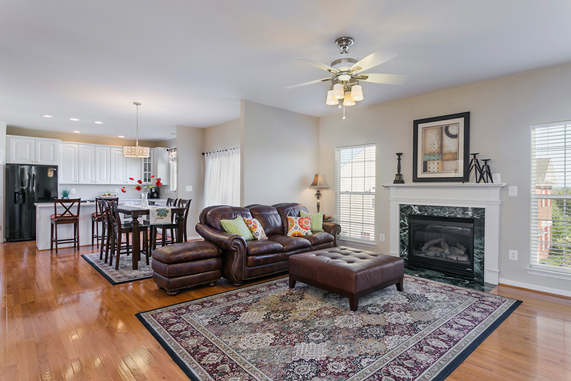 Ellicott City MD Family Room
