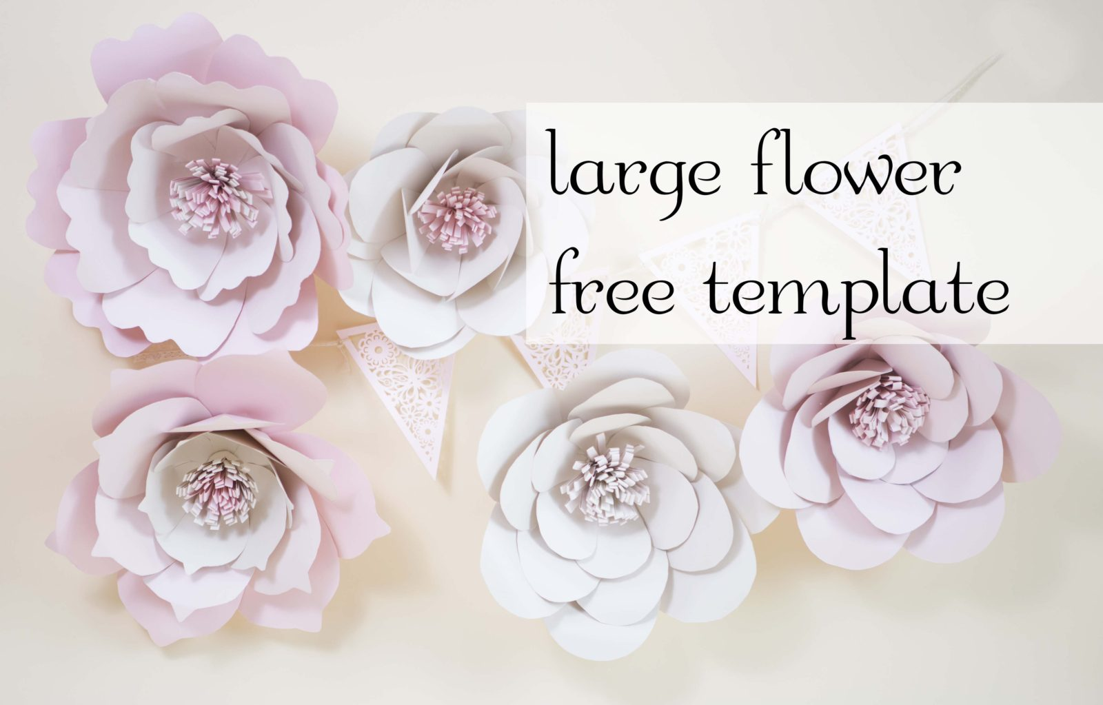 Giant Paper Flowers Free Template