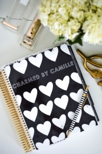 Erin Condren Planner | Charmed by Camille