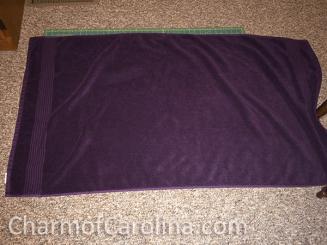 coc Hooded Towel 2