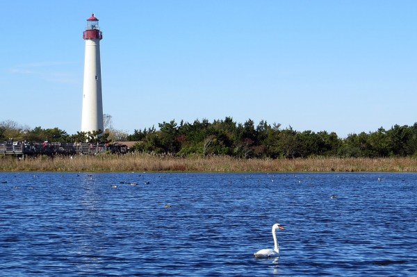 cape-may-restaurant-weekend-lighthouse-charm-posh
