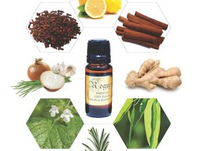 Best Natural Cold and Flu Remedies CharmPosh main