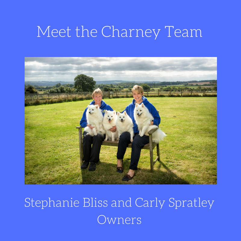 Meet the Charney Team