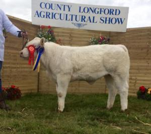Res champion Longford
